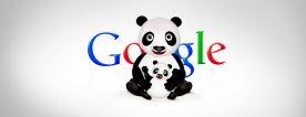 Seo Search Engine Optimization for Google Panda