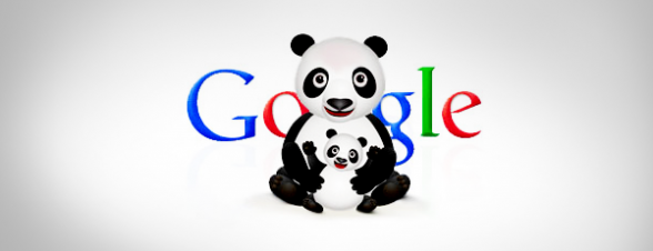 Seo Search Engine Optimization for Google Panda